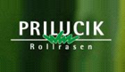 Prilucik & Co GesmbH