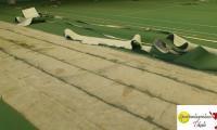 Teppichbelag grün 06